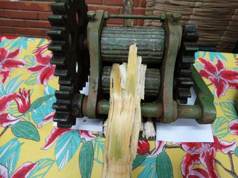 Extração do caldo de cana-de-açúcar
