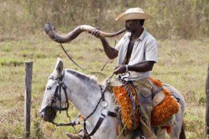 Sinueiro (Foto: http://www.ilovemsoficial.com/2012/04/historia-do-berrante.html)