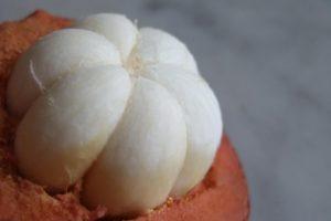 Mangostin (foto http://www.namu.com.br/materias/mangostin-exotico-saboroso-e-saudavel)